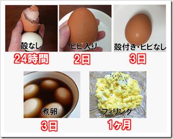 ゆで卵 保存